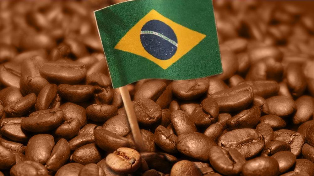 Independência do Brasil e o Café